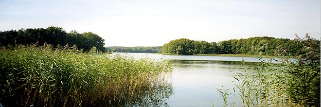 Ein einmaliges Ferienhaus im Herzen der Mecklenburgischen Seenplatte ...